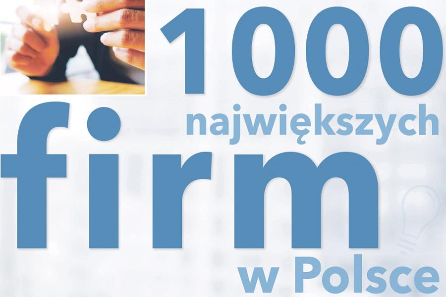 """Awans Śnieżki wzestawieniu """"Gazety Finansowej"""""""